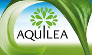 Aquilea